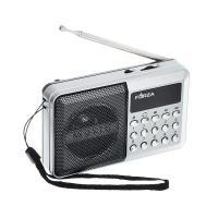 Радиоприемник переносной, аккумуляторный 916093