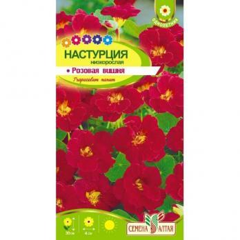 Цветы Настурция Розовая Вишня низкорослая/Сем Алт/цп 1гр.
