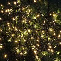 Гирлянда  Элек. вьюн для сада 198 LED , шампань 12м пост. свечение 220В  185044