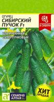 Огурец Сибирский Пучок F1  /Сем Алт/ Цп 5 шт