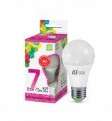 Лампа СВЕТОДИОДНАЯ ASD 7Вт LED-А60  белый 6500 К  холодный свет
