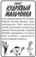 Зелень Салат Кудрявый Мальчонка бп 0,5 гр