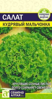 Зелень Салат Кудрявый Мальчонка Цп 0,5 гр