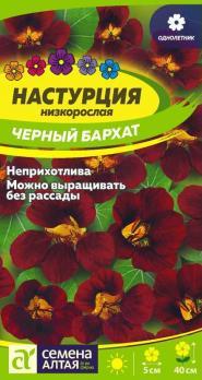 Цветы Настурция Черный бархат /Сем Алт/цп 1гр.